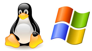 Linux and Windows Web Hosting Bolton